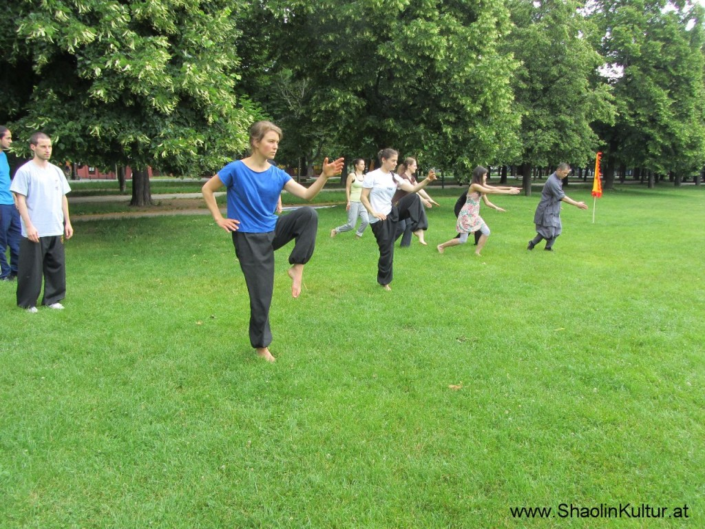 Shaolin Training im Park (1)