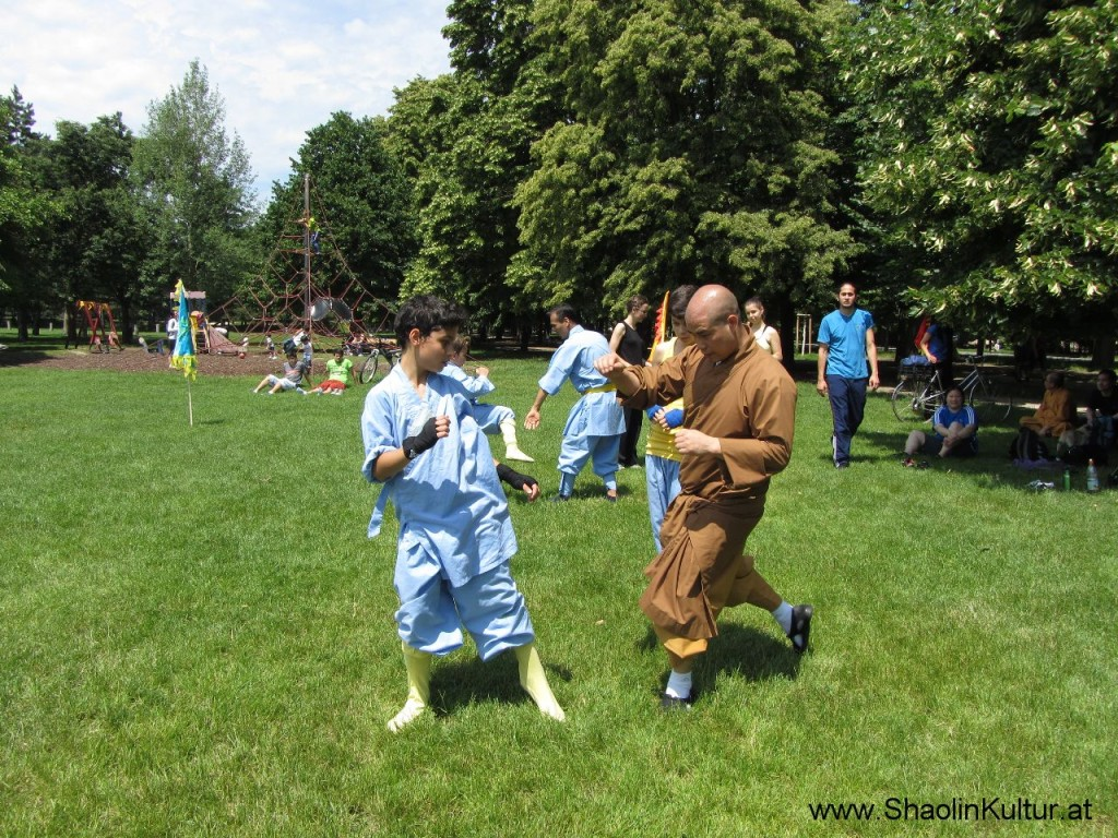 Shaolin Training im Park (15)