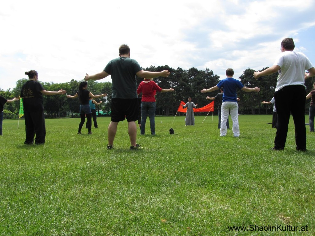 Shaolin Training im Park (19)