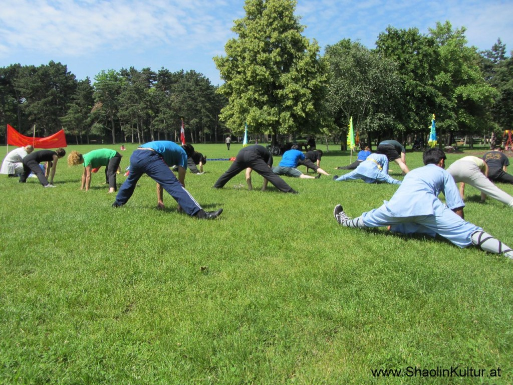 Shaolin Training im Park (5)