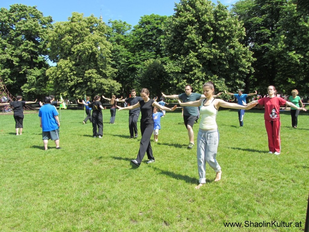 Shaolin Training im Park (7)