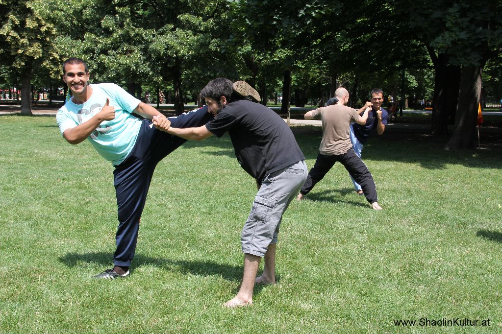 Shaolin Training im Park (307)