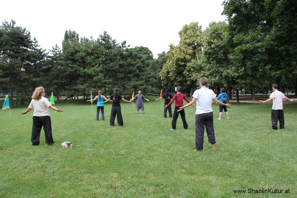 Shaolin Training im Park (382)